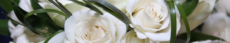 Beim Blumenbestellen und Blumenschenken sparen