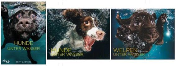 Hunde unter Wasser Kalender Geschenkidee